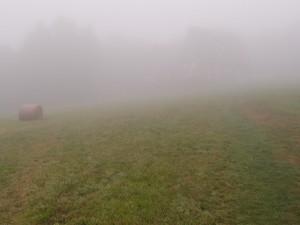 Hoher Nebel